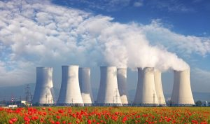 nuclear-cooling-towers-flowers